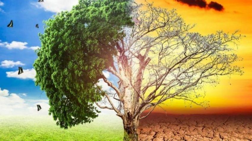 """Ημέρα περιβάλλοντος: """"Eυκαιρία για ατομική και συλλογική αυτοκριτική"""""""